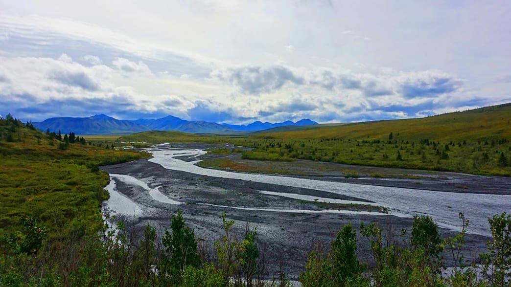 Ein vom Gletscher gespeister Fluss zwischen Anchorage und Denali hat sich ein breites Bett gebaut