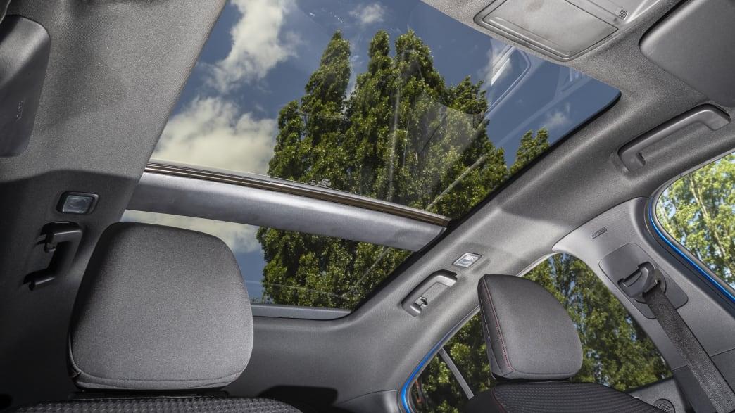 Ford Focus Panoramadach