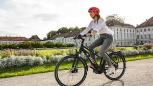 gebrauchte E-Bikes