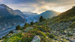 Panorama vom Aletschgletscher in der Bergwelt der Schweiz