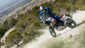 Yamaha Tenere 700 Modell 2019 in Action