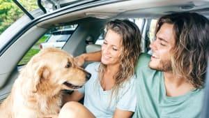 Paar sitzt mit Hund im Kofferraum
