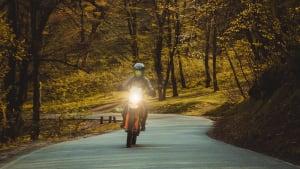 Motorrad fährt auf einer Strasse durch einen Wald