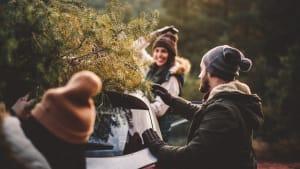 Freunde transportieren Weihnachtsbaum auf Autodach