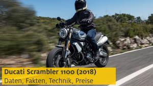 Vorschaubild zum Test der Ducati Scrambler 1100 von 2018