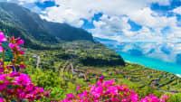 Wie wär´s mit einem Trip auf die Blumeninsel Madeira?