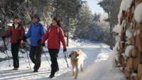 Familie mit Hund wandert über schneebedeckten Wanderweg im Hochschwarzwald