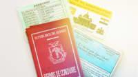 Führerscheine aus verschiedenen Ländern