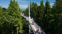 Baumwipfelpfad Skywalk Allgäu