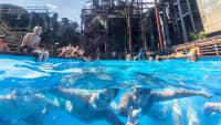 Schwimmbad in der Zeche Zollverein, Luftaufnahme