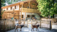 Tierparkschule im Tierpark Hellabrunn