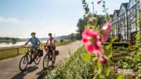 Zwei Radfahrer bei Schönebeck auf dem Elberadweg, der als einer der schönsten Radwanderwege Europas gilt