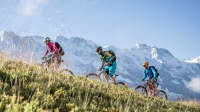 Mountainbiker in Grindelwald