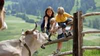 Im Juli 2020 ist ein guter Urlaub mit Kinder auf dem Bauernhof in Südtirol möglich
