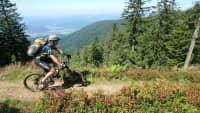 Fahrradfahrer bei Radtour im Schwarzwald