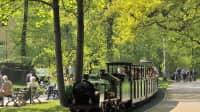 Dresdner Parkeisenbahn im Großen Garten
