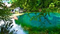 ein Blaugrüner See zwischen Bäumen