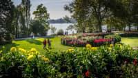Frühling auf der Insel Mainau am Bodensee