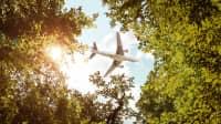 Flugzeug über grünen Baumwipfeln lässt über co2-Kompensation nachdenken