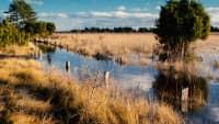 von Wasser durchzogene Landschaft