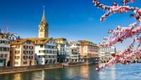 Zürich im Frühling