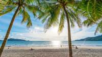 Ein Traumstrand mit Palmen