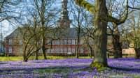 Das Schloss Husum im Frühling zur Krokusblüte