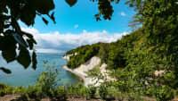 Die Kreidefelsen auf Rügen im Sommer