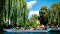 Eine Bootsfahrt durch den Spreewald