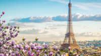 Paris und den Eiffelturm über die Blüten eines Mangnolienbaumes