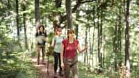 Gruppe von Freunden geht auf einem Wanderweg wandern