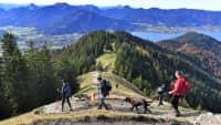 Wanderer mit Hunden in den Alpen beim Tegernsee