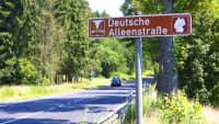 Schild der Deutschen Alleenstraße vor einer Allee