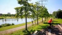 Auf den Krupp-Guertel bei Essen sind Fahrrad und Fußgängerwege getrennt