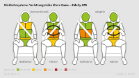 Rückhaltesystem, Fahrer, Beifahrer, ältere Dame, konventionell, adaptiv