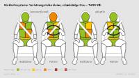 Rückhaltesystem, Fahrer, Beifahrer, kleine, schmächtige Frau, konventionell, adaptiv