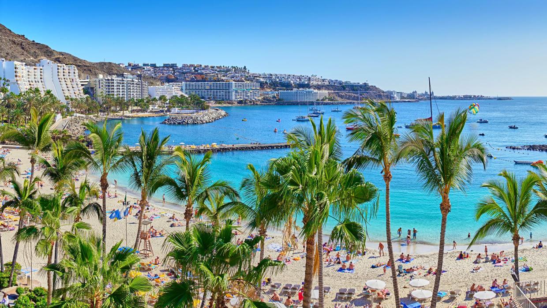 Ein Strand mit Palmen im Vordergrund und  Großen Gebäuden im Hintergrund