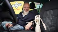 Fahrlehrer sitzt auf Beifahrersitz