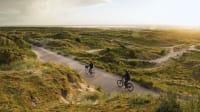 Fahrradfahrer auf Friesland