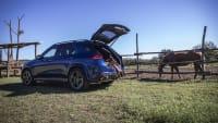 Mercedes GLE stehend neben einer Pferdekoppel