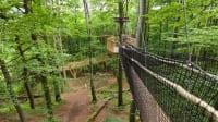 Baumwipfelpfad Vogelsberg