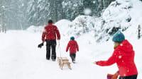 Familie mit Schlitten im Schnee
