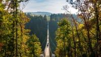 Eine lange Hängebrücke in einer herbstlichen Waldlandschaft