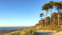 Strand von Fischland-Darß-Zingst