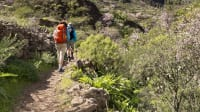Wanderer im Barranco de Guayadeque