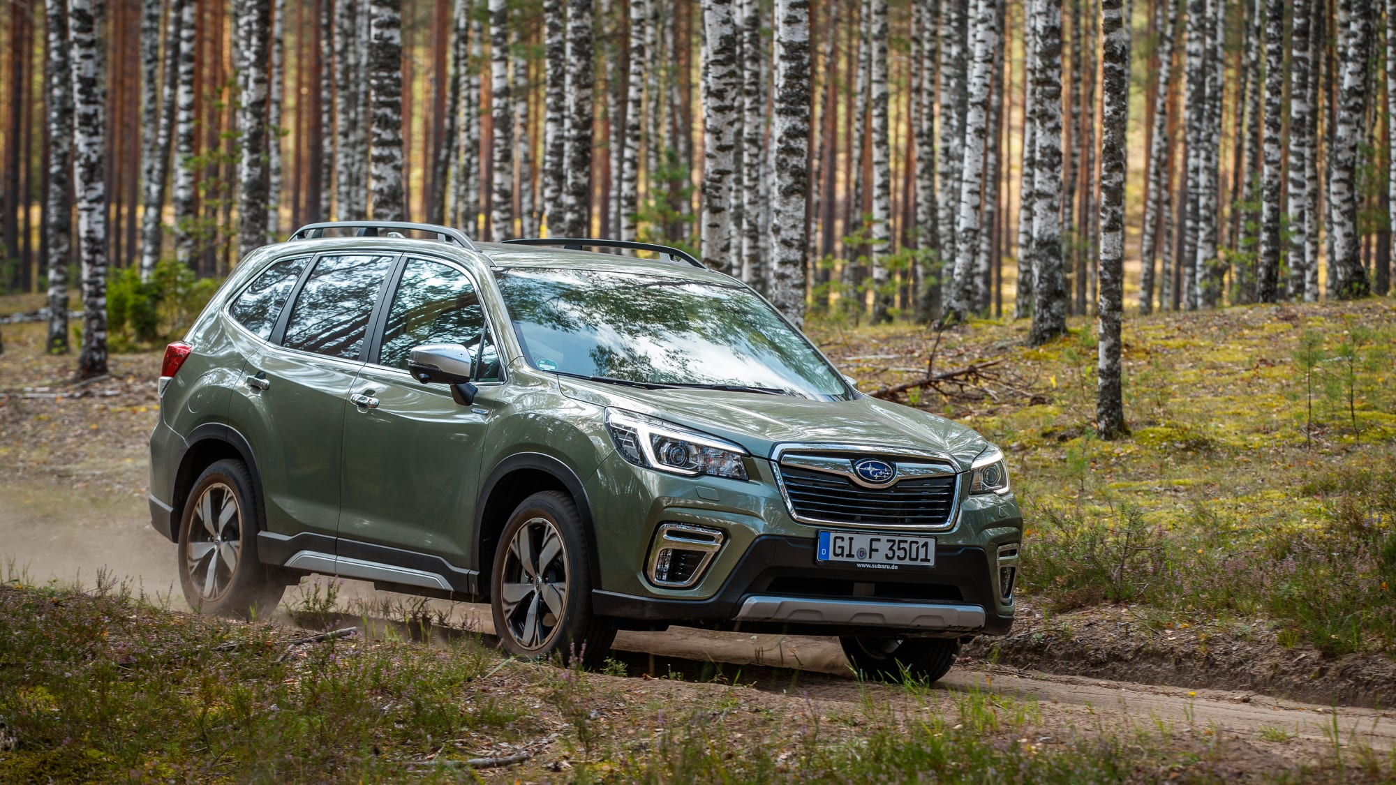 Seitenansicht des Subaru Forester