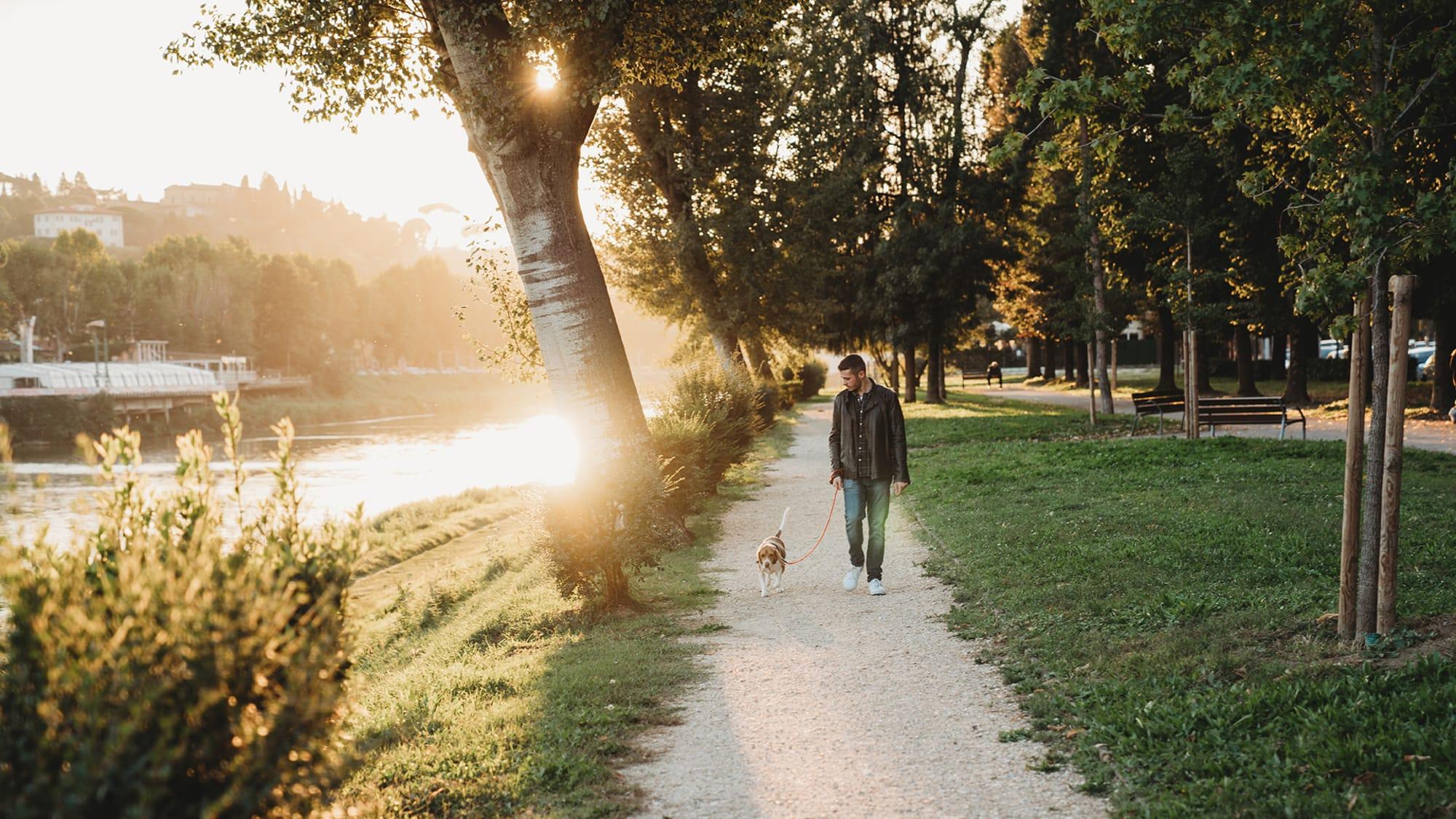 Mann geht mit seinem Hund spazieren