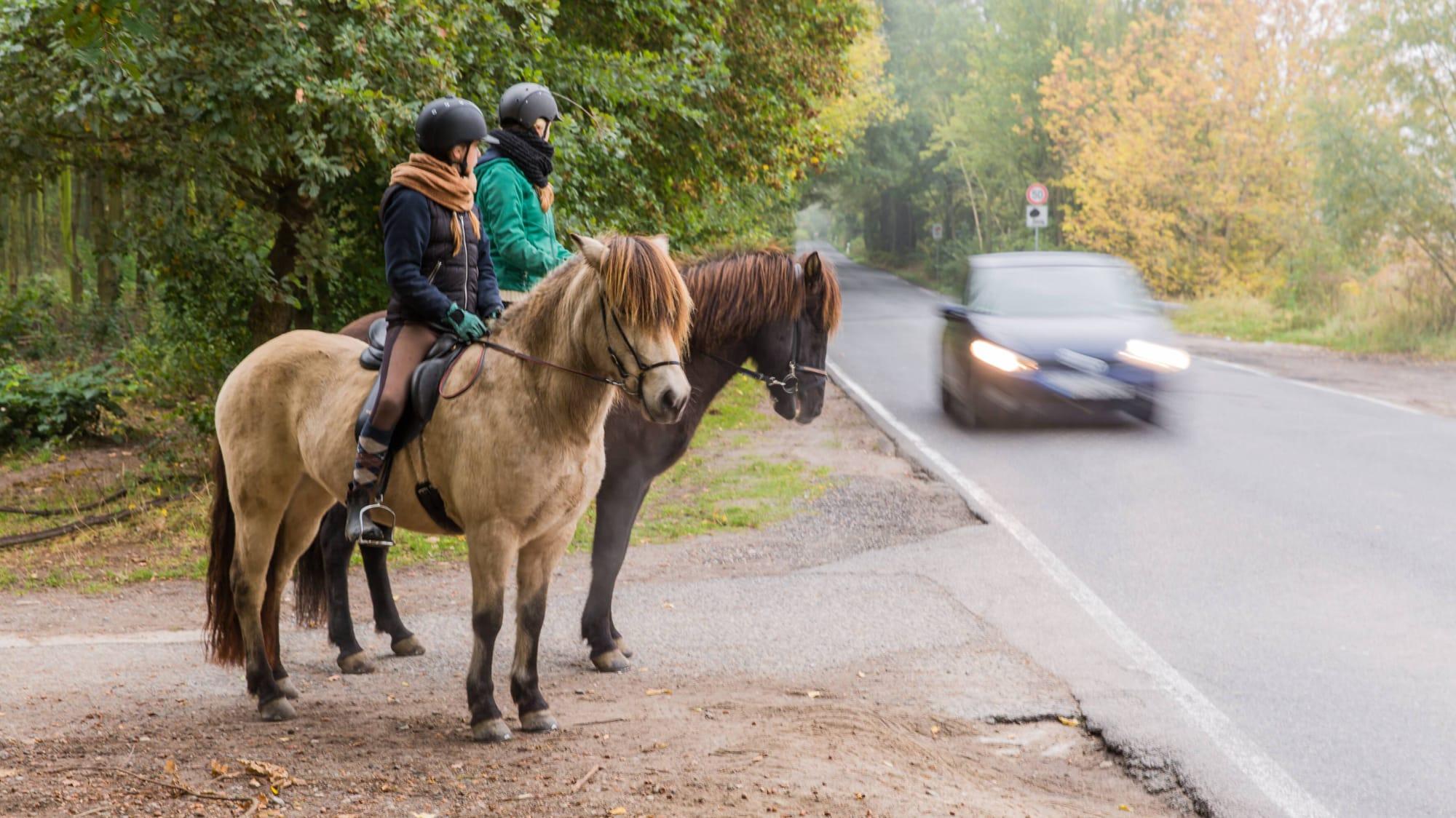 Zwei Reiter stehen mit Pferd am Strassenrand