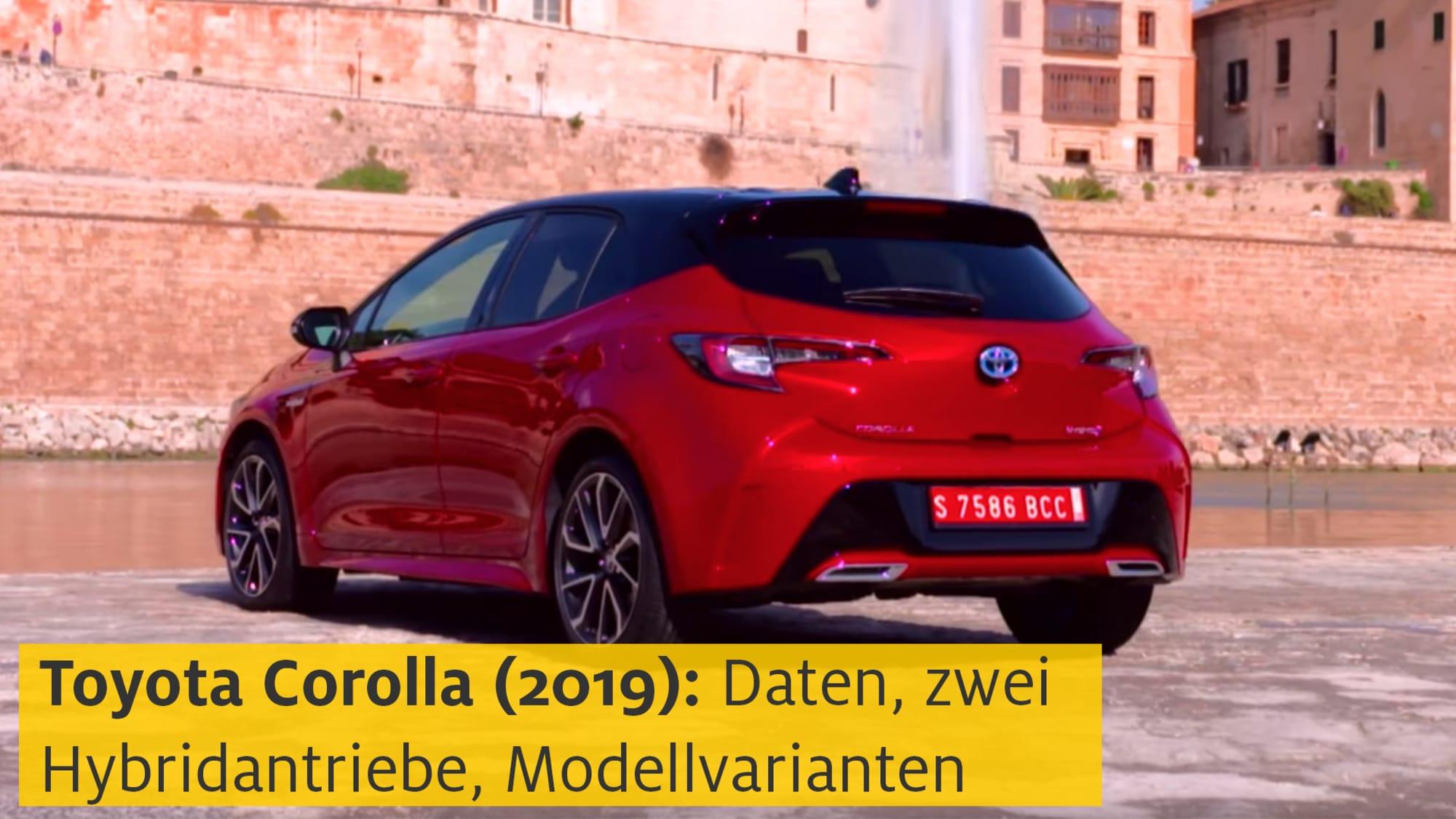 Kofferraumwanne für Hyundai Ioniq Elektroantrieb Schrägheck Hatchback 5-türer 20