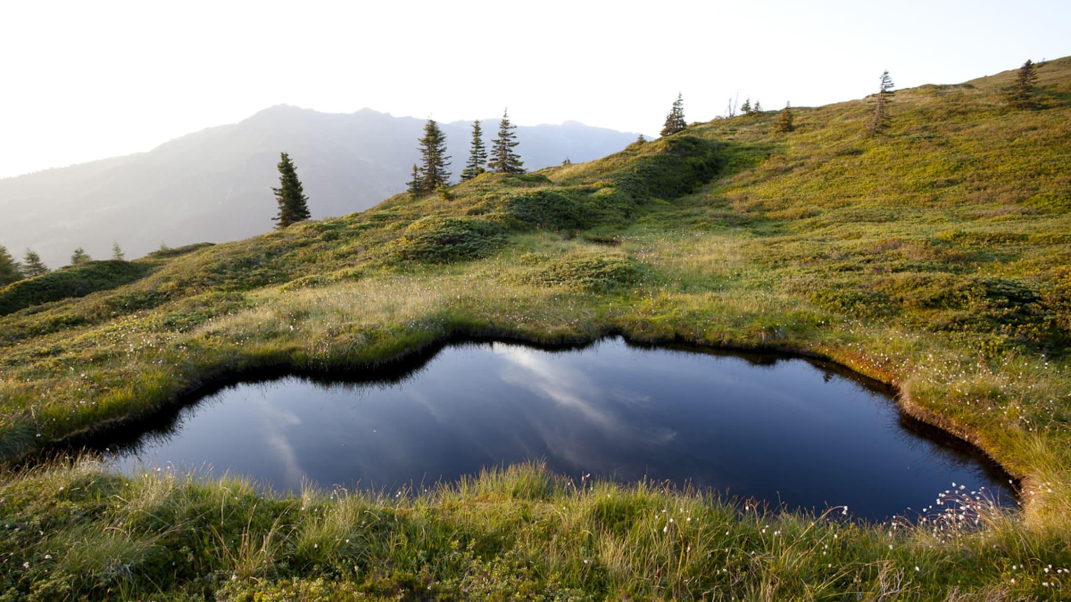 Teich in den Bergen